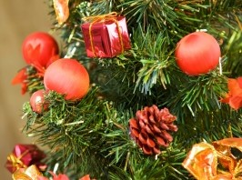 Season of His Story - Christmas Poem and eCard by Caroline Gavin of Purposeful Pathway Christian Life Coaching