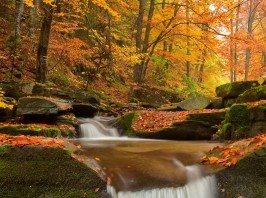 The Beauty of Fall: Christian Poem