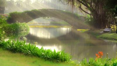 Living Sacrifice Christian Poem by Caroline Gavin of Purposeful Pathway Christian Life Coaching