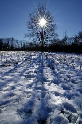New Year Prayer Poem by Caroline Gavin of Purposful Pathway Christian Life Coaching www.PurposefulPathway.com
