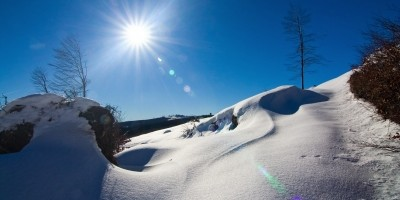 Free Image Winter Sun by Evgeni Dinev
